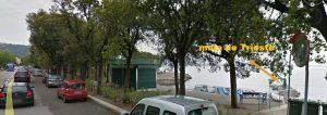 mula de Trieste